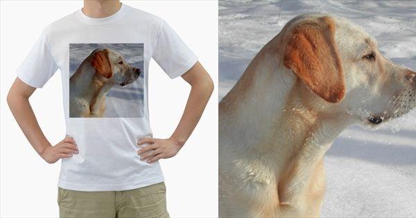 4+Yl+Men's+T-Shirt+(White)+