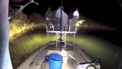 Light for Bowfishing Boats #bowfishing #boats #fishing