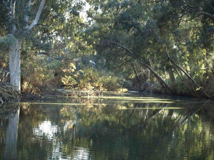 Jordan River, The Holy Land...we saw this...November 2012 with Polk Street Methodist Tour