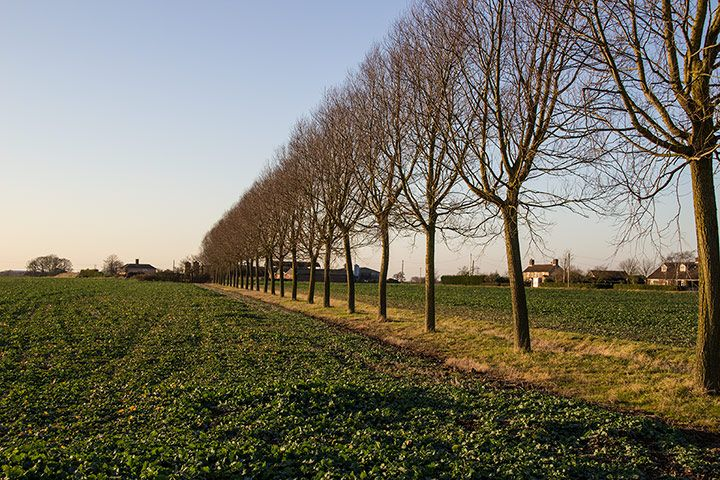 Local walks are the most sustainable form of exercise going