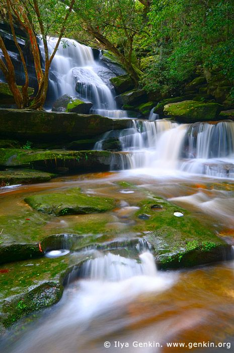 landscapes stock photography   Lower Somersby Falls, Brisbane Water National Park, Central Coast, NSW, Australia