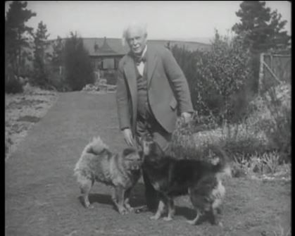 Lloyd George always kept dogs, particularly Chow-Chows, and was especially fond of his black chow, always referred to as 'Y Chow Du'.