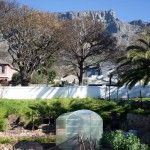 We are all envious of this beautiful garden in Oranjezicht.  Come and visit the greenhouse at the OZCF, Cape Town, South Africa. http://urbanfreedom.co.za/2013/08/ozcf-installation-greenhouse-envy/