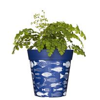NEW!  Blue fish planter, plastic plant pot, 22cm 5L