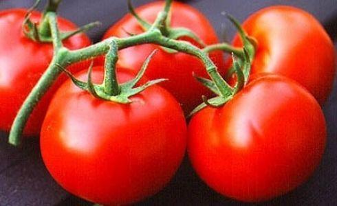 tazemasa.com, taze, masa, tazemasa, organik ürün, kahvaltılık, meyve, sebze, zeytin, zeytinyağı, salça, turşu, sirke, bakliyat, erişte, haftanın, sepeti, mevsim, takvim, yöresinde, gıda, kolaylık, çeşitlilik, sağlık, bütçe tasarrufu, yemek, temmuz, domates