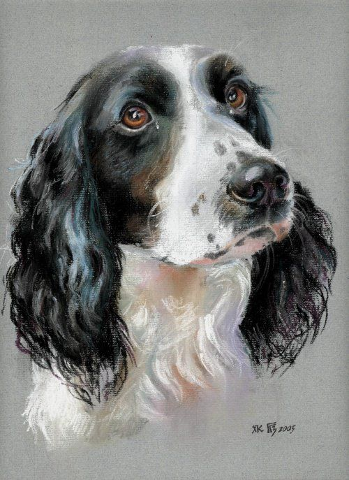 Gilmanova Gulshat artiste, peintre animalier.