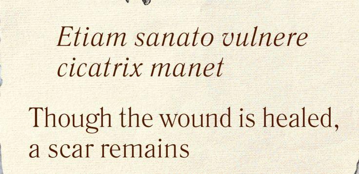 Seneca Latijnse Citaten : Beste ideeën over latijnse citaten op pinterest