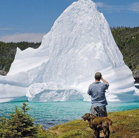 Bonavista iceburg