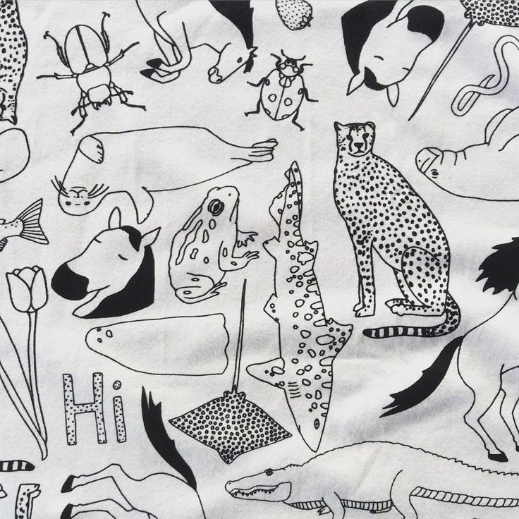 Lorien's Zoo Colour Me Thunderpants print