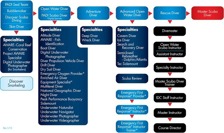 SCUBA Certification — PADI Dive Courses and Diver Education Flow Chart, I want to get my certification this summer!!