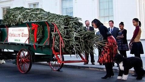 whitehouse 2012 Christmas tree