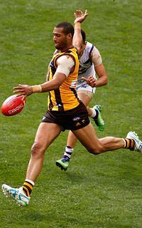 HAWTHORN defender Josh Gibson has capped a great season by winning the club's best and fairest.