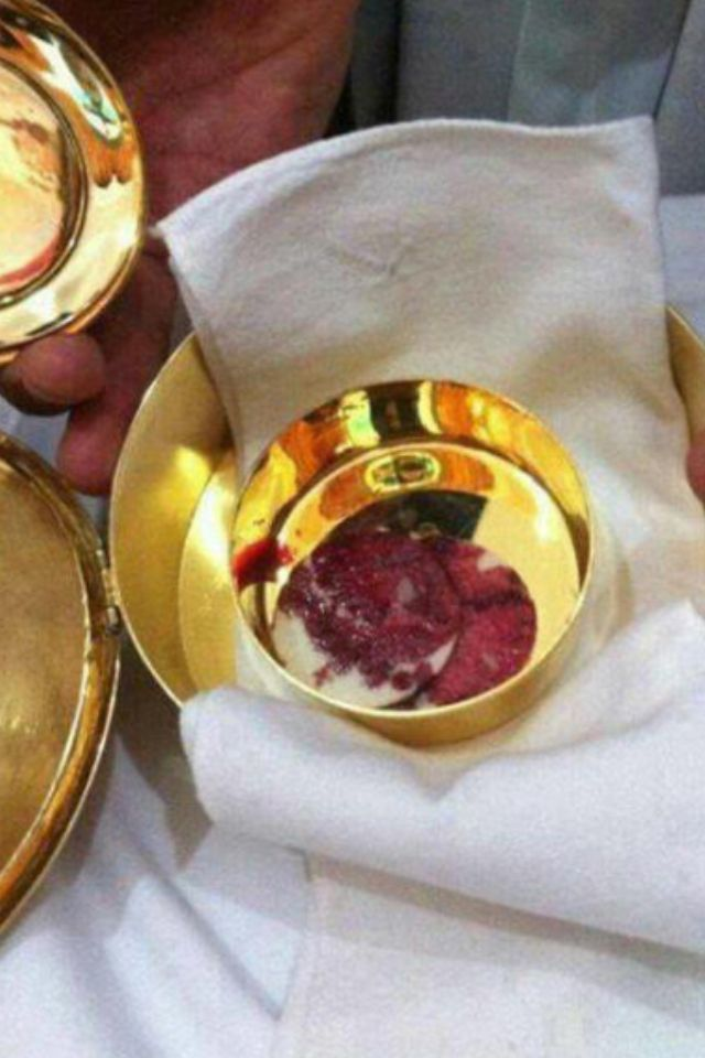Eucharistic Miracle in Mexico www.spiritdaily.com