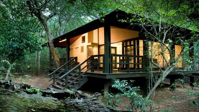 Phinda Forest Lodge, kwaZulu- Natal - SOUTH AFRICA. http://www.go2africa.com/accommodation/150