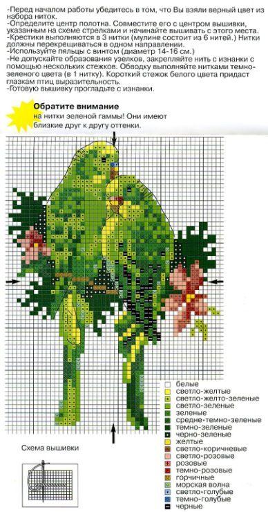 Borduurpatroon Kruissteek Papegaai - Parkiet *Embroidery Cross Stitch Pattern Parrot
