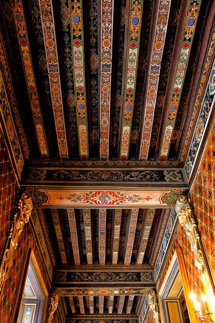 Ceiling, Château de Cheverny, Loire, France