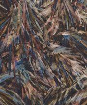 Saxby C Tana Lawn Cotton