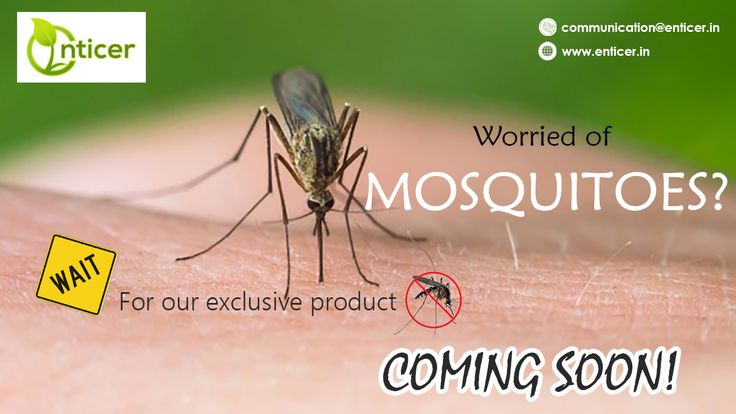 don't worry about mosqitos! use our product #organic @enticergroups #MakeInIndia