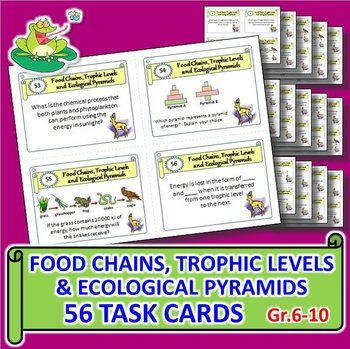 These 56 Task Cards with EDITABLE TEMPLATE provides a great activity for student centered enrichment or review. Along with descriptive tasks, 19 of the task cards contain diagrams of food chains and ecological pyramids to analyze. This task card set is a handy tool for early finishers or as an independent study or group activity. This hits common core standards for reading, listening, writing and speaking.