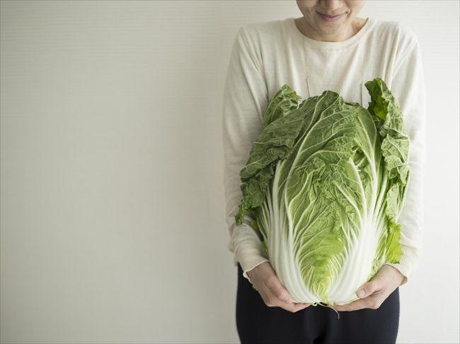 白菜は冷凍した方がおいしい!?丸ごと買って使いきれなくても大丈夫