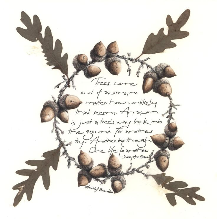 Custom Wedding Accessories Savannah Live Oak Thumbprint: 182 Best Watercolor- Oak Trees Images On Pinterest