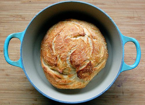 Tuscan herb loaf: Dutch Ovens, Garlic Tuscan Herbs, Garlictuscan Herbs, Breads Recipes, Crusti Garlic Tuscan, Tuscan Breads, Knead Breads, Homemade Breads, Herbs Loaf