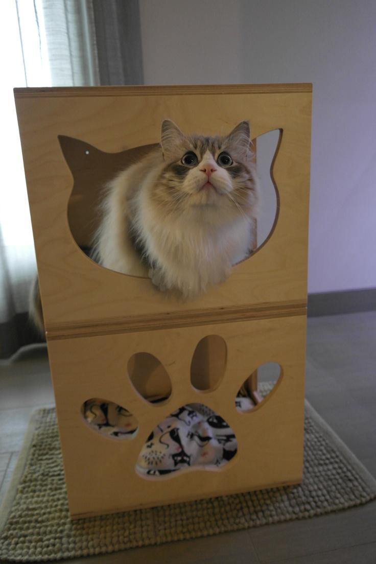 cubi gatto sovrapposti