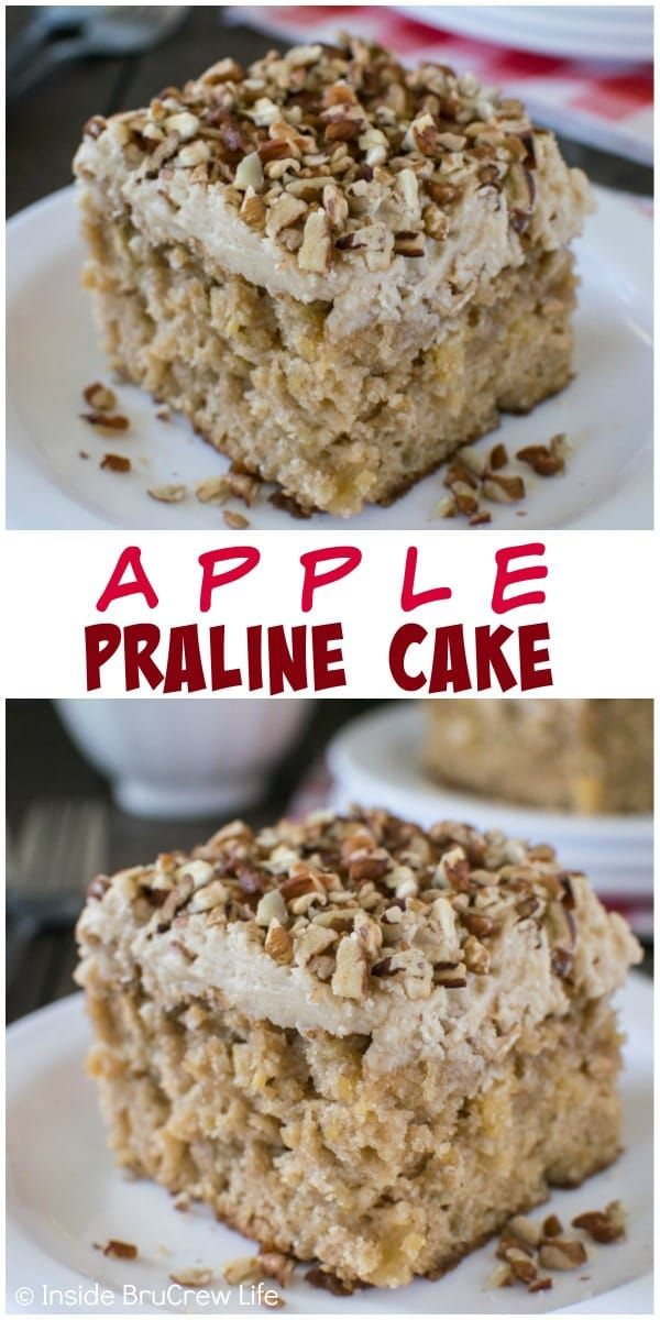 Adding a pecan praline frosting to this fresh apple cake makes it the best fall cake!