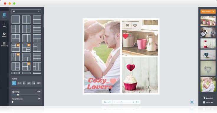 FotoJet is a free online photo editor, collage maker and graphic designer that allows you to edit photos and create collages and designs easily. https://www.fotojet.com/