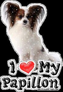 Papillon Dog Lovers image.