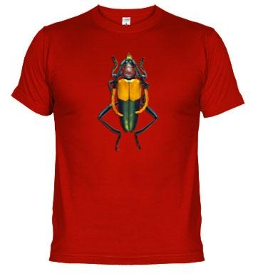 Camiseta de chico con insecto.