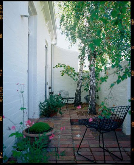 Balcony Garden Ideas Australia: Best 25+ Small Courtyards Ideas On Pinterest