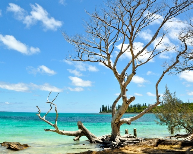 Ile des Pins, New Caledonia ... Been there done that!!!! Fav place on earth!!!!