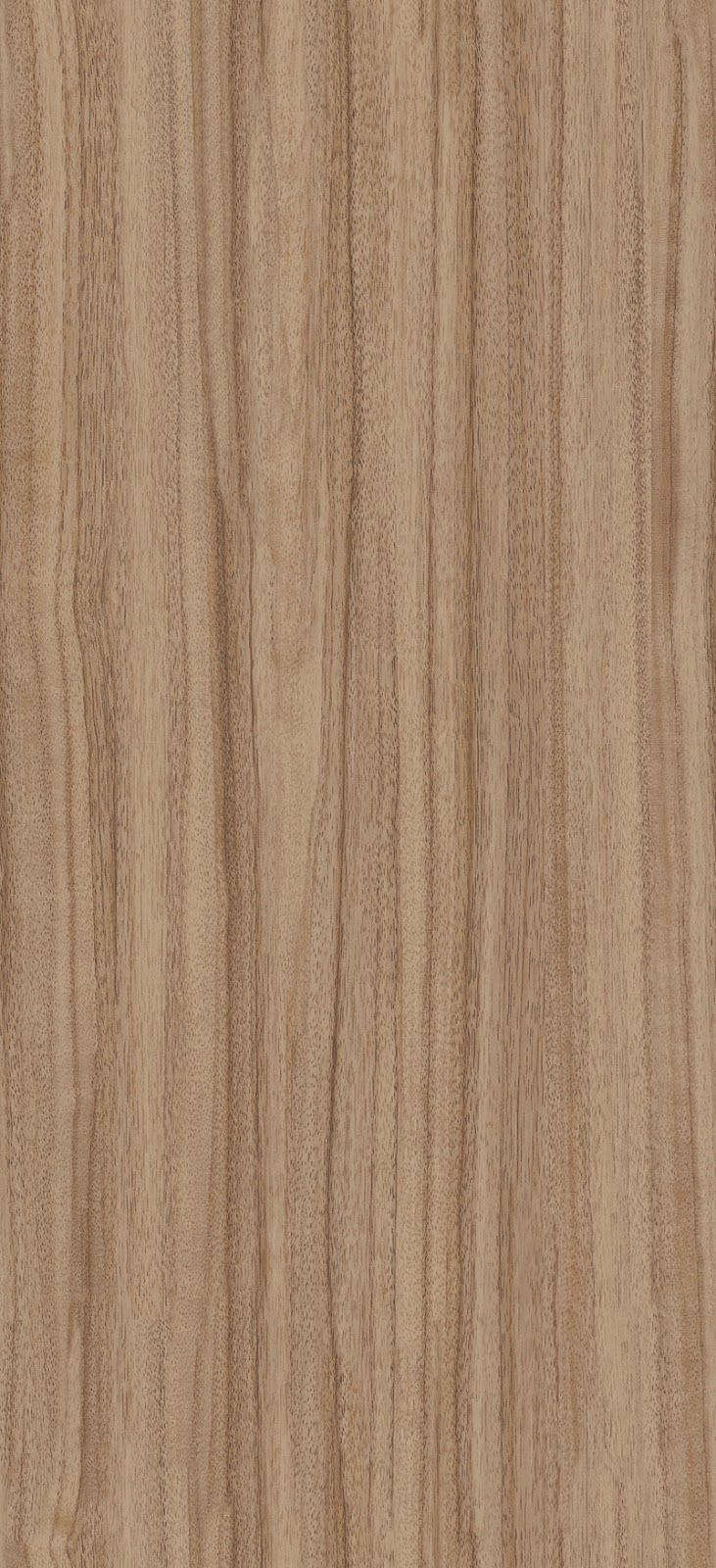texturise: Seamless French Walnut Wood Texture