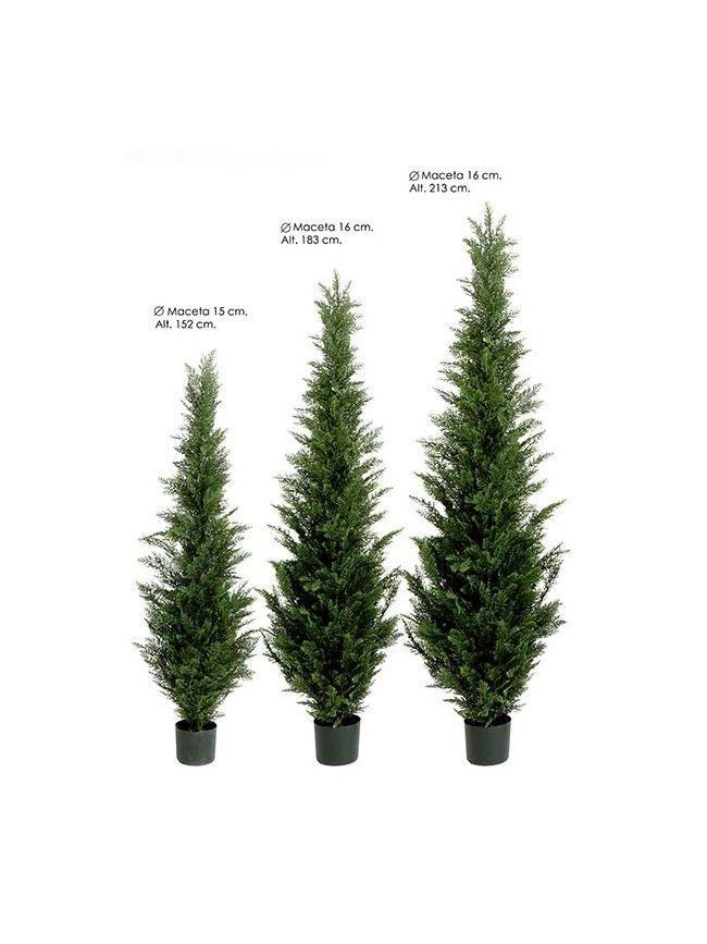 Las 35 mejores im genes sobre arboles palmeras - Arboles artificiales grandes ...
