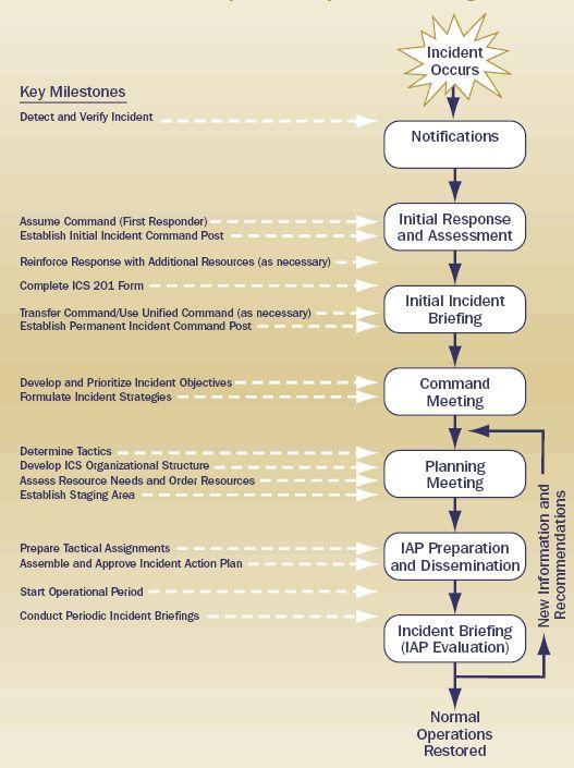 Planning process milestones