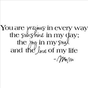 Amazon.com: You Are Precious in Every Way the Sunshine in My Day the Joy in My Soul and the Love of My Life -Mom wall sayings vinyl lettering home decor decal stickers quotes appliques: Home & Kitchen