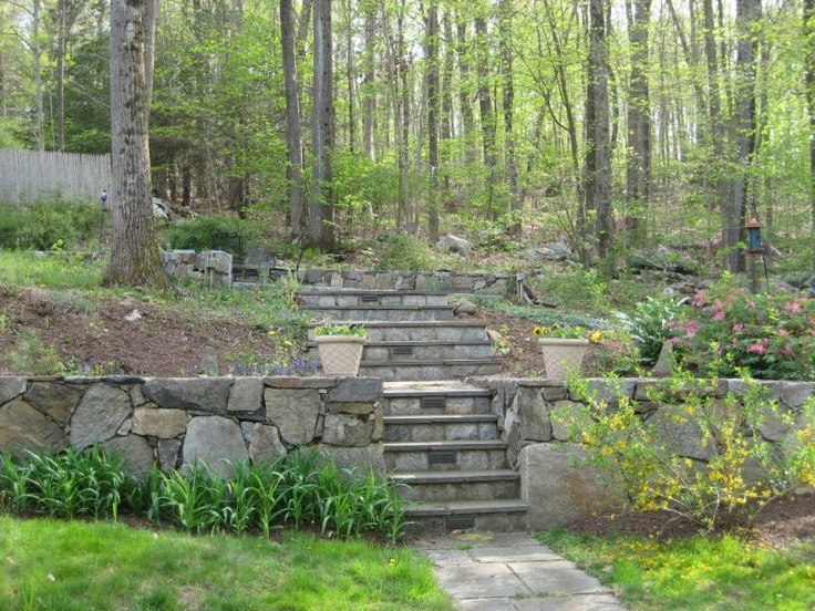 Best Verges And Hill Gardens Images On Pinterest Backyard