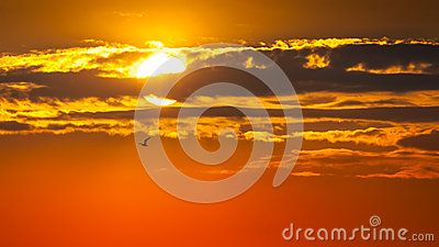 Beautiful sunrise with clouds over sun. Orange background.