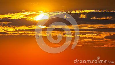 Beautiful sunrise with clouds over sun. Orange background.