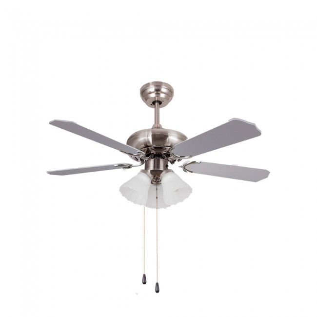 Fan With Light Skua Sulion Wonderlamp Shop Fan Light