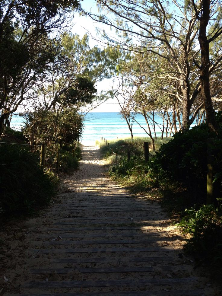 Track to the beach