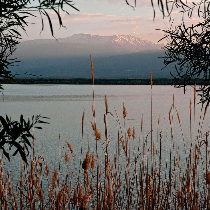A view from the Sea of Galilee towards snow-capped Mount Hermon - Israel