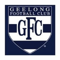 Geelong Cats Face Washer