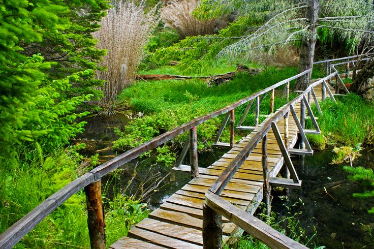Reserva Nacional Laguna Verde en Coyhaique. Foto de Yerko Castillo.