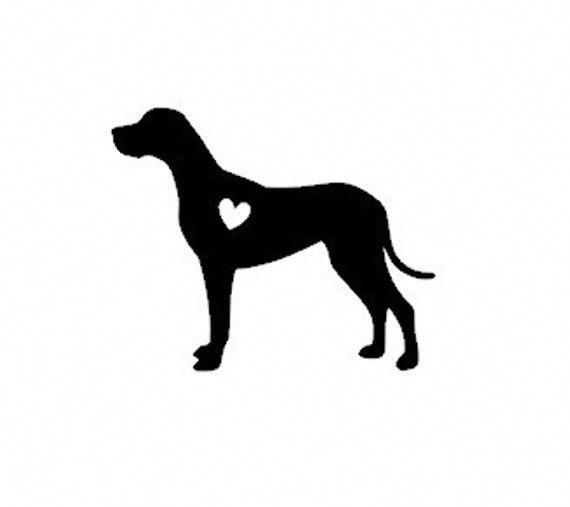 3 Glorious Great Danes Dog Ideas Wonderful Ideas About Dogs