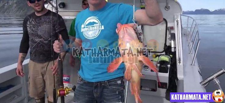 Πήγαν για ψάρεμα στην Αλάσκα: Θα τα χάσετε με τις ψαρούκλες που έπιασαν