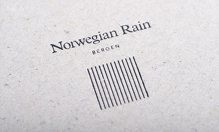 Image result for Norwegian rain logo