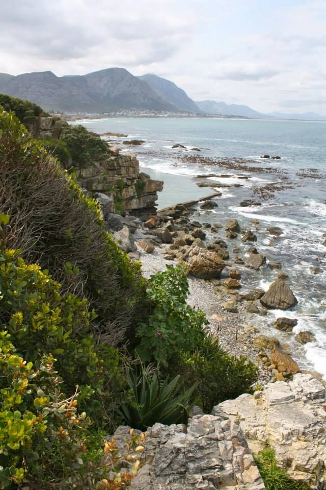 Rocky coastal line of the town of Hermanus - the focus point of the Cape's whale watching season on the Whale Route.