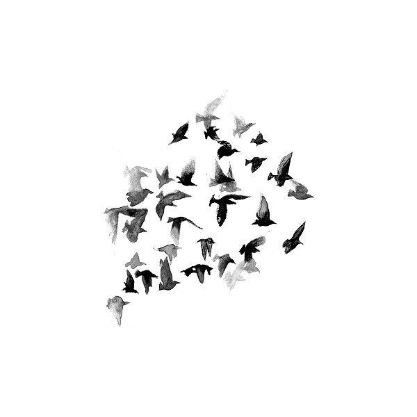 white bird black personals Seniorblackpeoplemeetcom is the premier online black senior dating service black senior singles are online now in our large black senior people meet dating community.